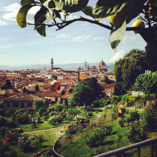 Lost_in_florence_rose_garden1