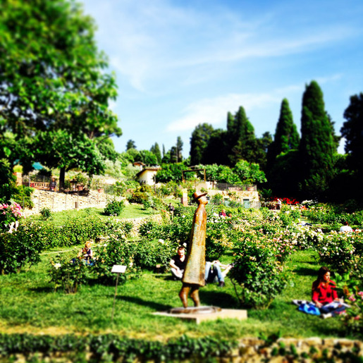 Lost_in_florence_rose_garden2