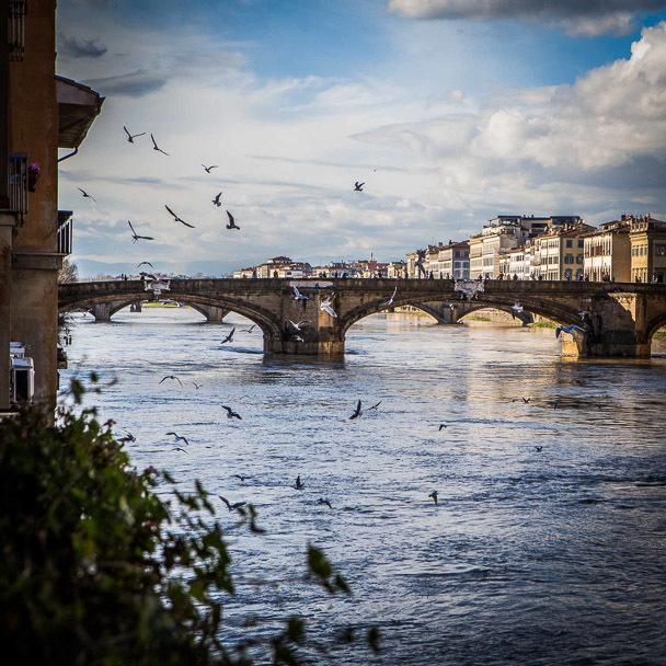 _ilaria_costanzo_lost_in_florence_ortigia_5071